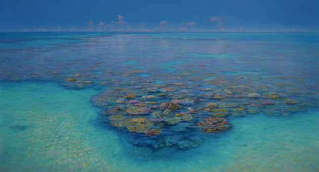 hardy-reef-corals.jpg